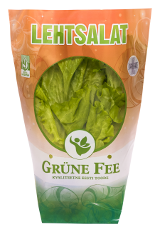 Grüne Fee lehtsalat