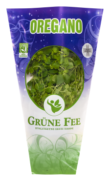Grüne Fee oregano